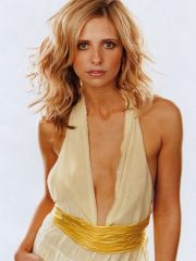 adorable actress Sarah Michelle Gellar..