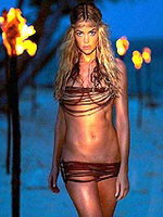 American actress Denise Richards..