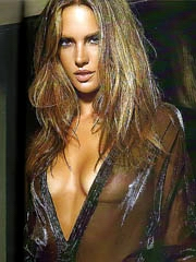 Alessandra Ambrosio oops flashes hot..