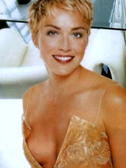 Celebrity Sharon Stone basic pics, oops!