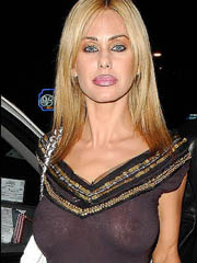 Shauna Sand big fake tits in see thru..